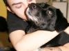 doggie_dro_hugging