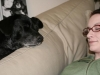 sara_doggie_sleeping