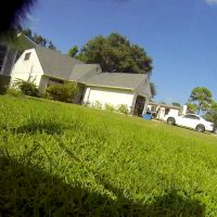 Luna The Wolfdog GoPro photo of the neighbors house