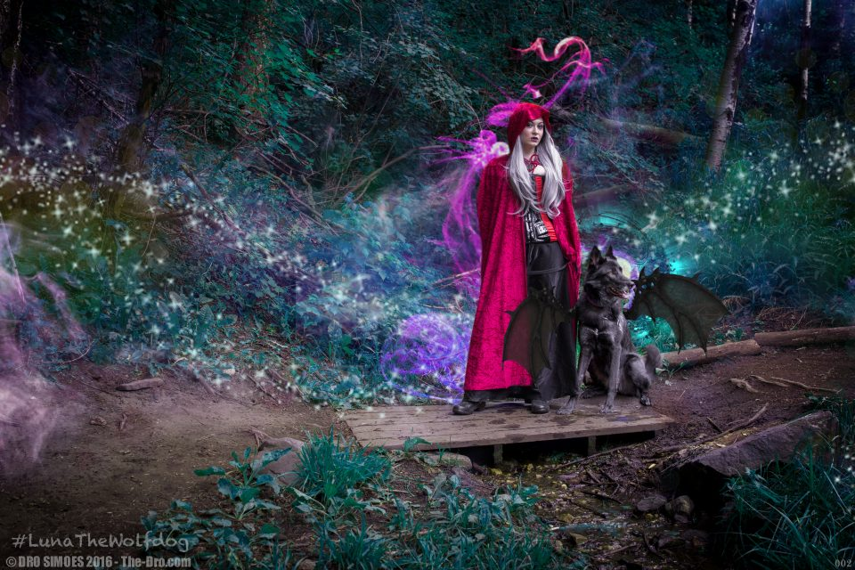 Luna the Wolfdog Enchanted Forest 02