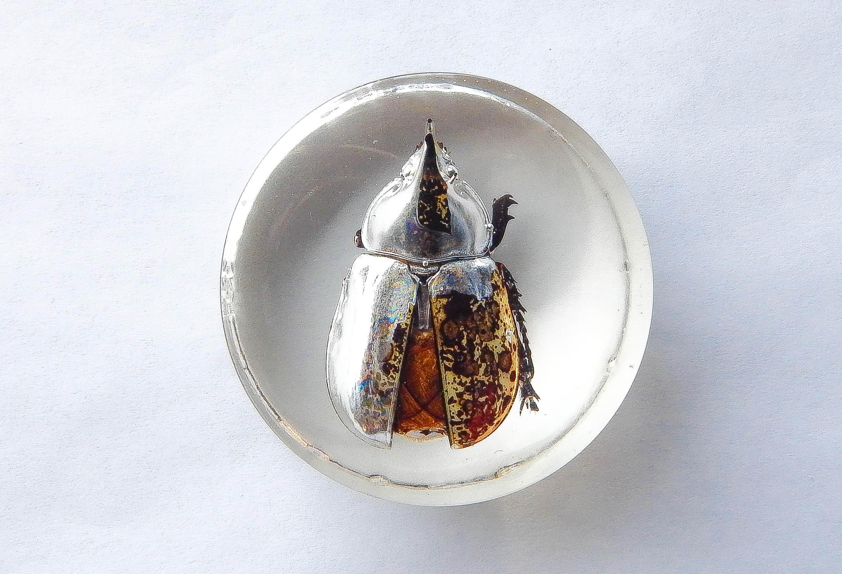 Hercules Beetle Resin Paperweight • The Dro