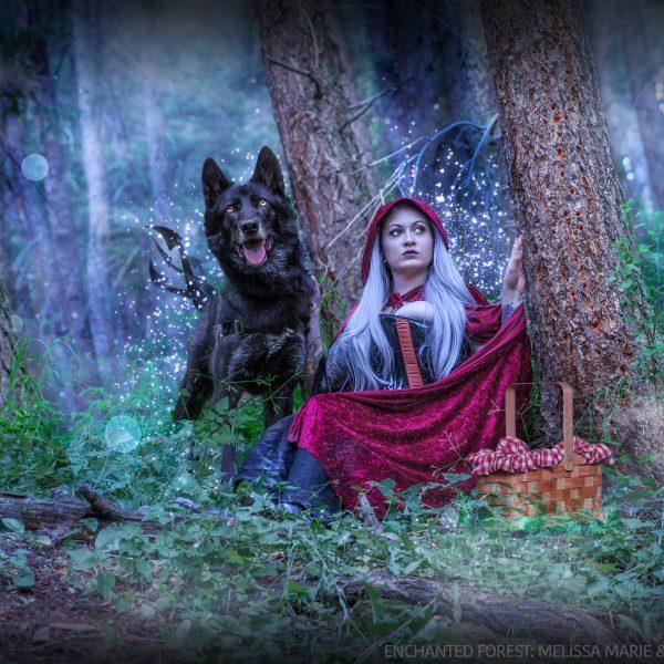 Mel & Luna the Wolfdog Enchanted Forest 01
