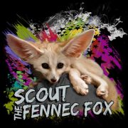 ScoutTheFennecFox Channel Shirt 002