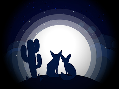 Fennec Fox Desert Moon