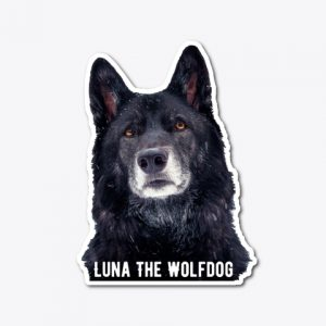 Luna The Wolfdog Sticker